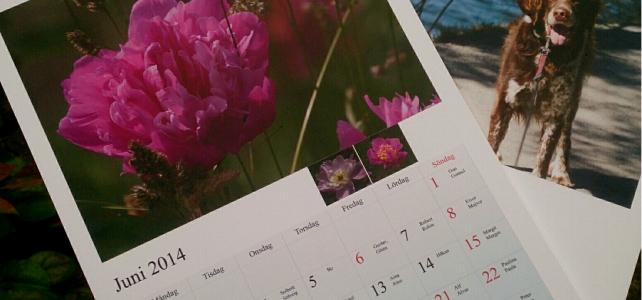 Vill du köpa en Antibes-kalender 2015?