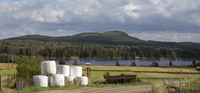 Månadens bild: Ljusnan i Hälsingland