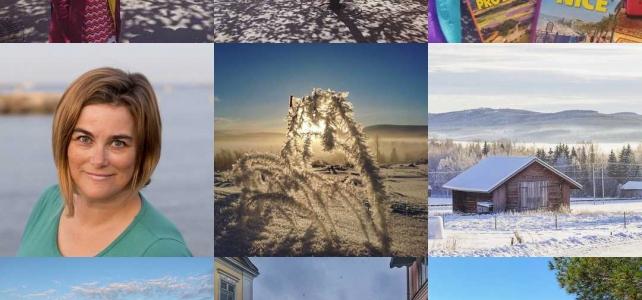 Reflektioner: Mitt år (i sociala medier) 2017