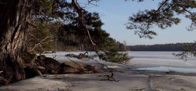 Månadens bild mars 2012