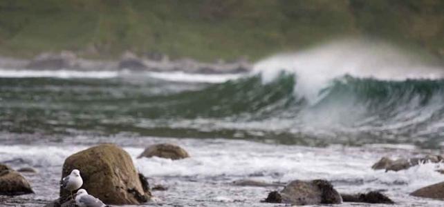 Vackra omgivningar runt surfcampen