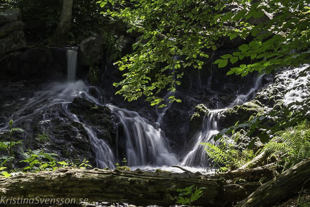 6-juni-2019-webb-vattenfall-_mg_4298