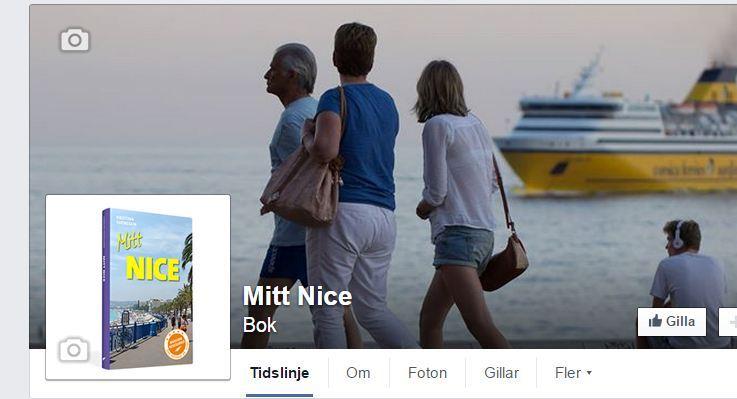 fb-mitt-nice