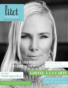 litet-magasin-nr-1-2015