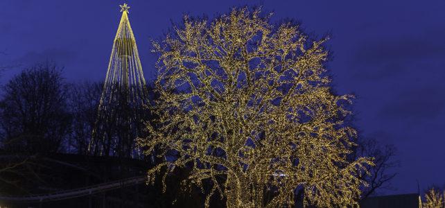 Månadens bild: julmys på Liseberg