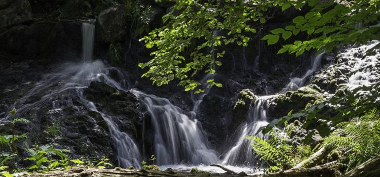 Månadens bild: vattenfall i röttle