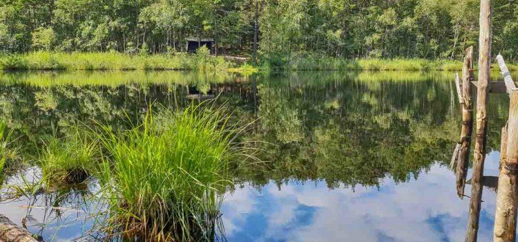 Månadens bild: vandring vid sjö i Täby