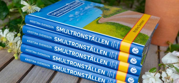 Min första presentbok: Smultronställen mellan Göteborg och Stockholm