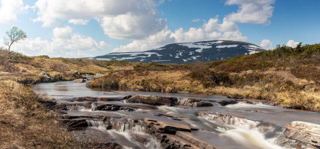 Maj 2021: Livstäterån med Skarvarna i bakgrunden i Funäsfjällen