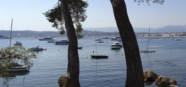 Månadens bild: Pinjeträd och båtar i Juan les Pins-bukten
