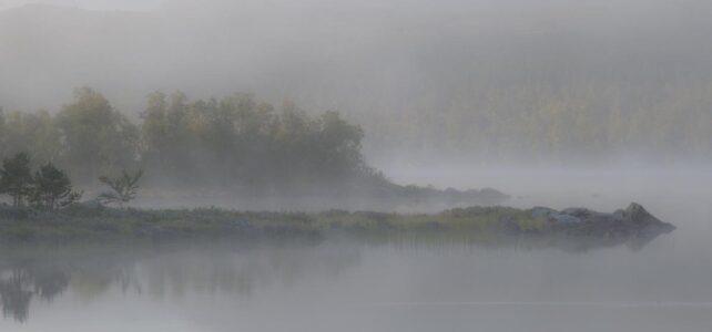 Månadens bild september 2012